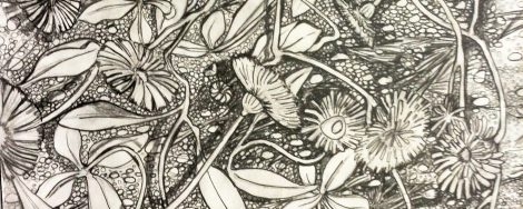 cropped-dandelionpencil2.jpg